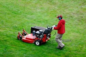 Professional Lawn Company in St. Louis