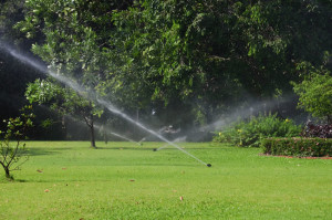 Lawn Irrigation Services in St. Louis